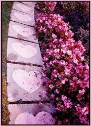heartsteps